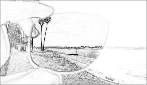 Shamir: le lenti polarizzate